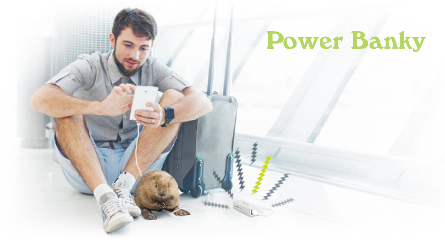 Externí baterie Power Banky aneb přenosné nabíječky pro mobilní telefony, GPS, tablety, audio MP3 přehrávače, fotoaparáty apod.